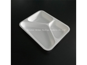 Fast Food Packaging Tray